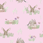 Sweet Bilby - Sweet Bilby on Pink