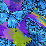 Rainforest - Butterfly Magic in Blue/Multi