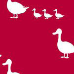 Ducks in Red