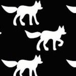 Foxes in Black