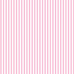 Dress Stripe - Dress Stripe in Blush