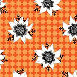 Matilda - Flannel Flower in Orange