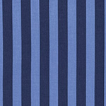 Tabby Road - Tent Stripe in Blue Bird