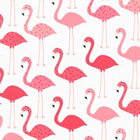 Urban Zoologie - Flamingos in Flamingo