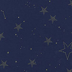 Magic - Lucky Stars in Navy Metallic
