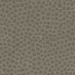 Sprinkles - Sprinkles Texture in Medium Steel