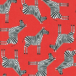 Jungle Party - Zebras in Bright