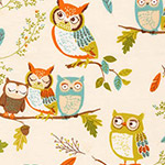 Forest Fellows - Owls in Nature