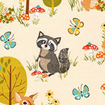 Forest Fellows - Raccoon and Friends in Nature