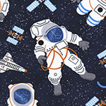 Novelties - Astronauts in Navy