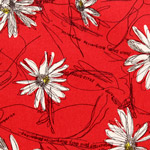 Mini Marguerite Daisies on Red