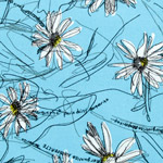 Mini Marguerite Daisies on Light Blue