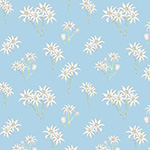 Sweet Bilby - Flannel Flower on Blue