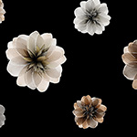 Essence of Pearl - Floating Blossoms in Black