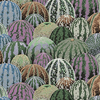 Kaffe Fassett Collective - Watermelons in Grey