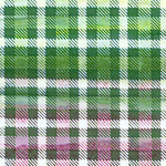 Kilts and Quilts - Highland Hilltops NC80390 073