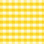 Puddle Jumpers - Gingham Check in Yellow